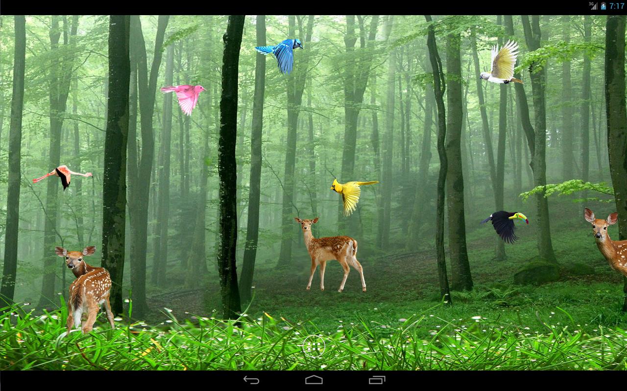 Rain Forest Live Wallpaper Revenue Download Estimates Google
