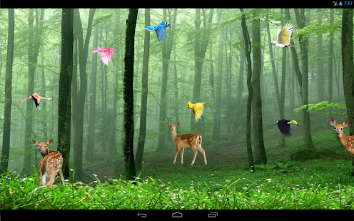 Download HD Video Live Wallpapers PRO 1.1 Free Android ...