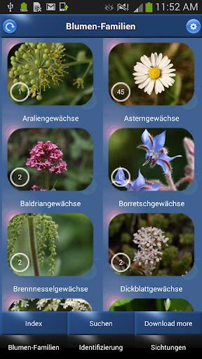 Blumen Id - Naturführer