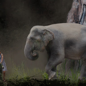 gajahdanagna.jpg