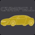 차량 원격제어/관리 카스펠 icon
