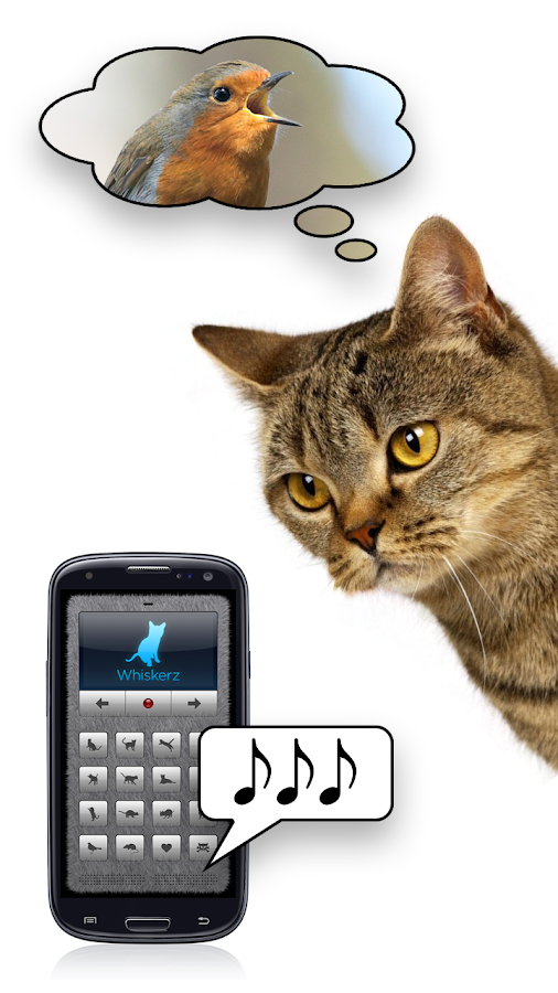 Human-to-Cat Translator - screenshot