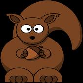 CrazySquirrel