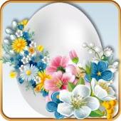 TSF Shell Easter Blossom