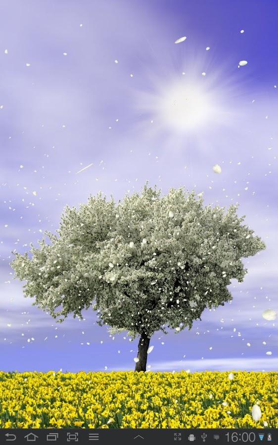 Spring Trees Live Wallpaper- screenshot