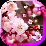 Sakura Amazing live wallpaper