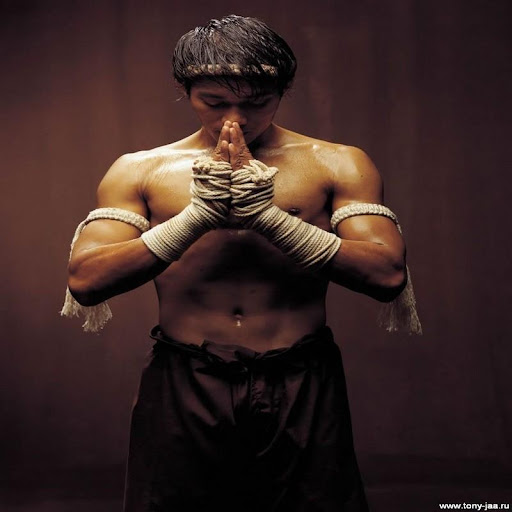 free mma wallpapers phone