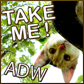 Sweet Kitty Theme for ADW