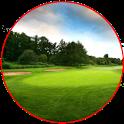 Golf Pin icon