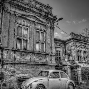 Beetle by Dragan Gavrillo Velickovic - Transportation Automobiles ( old house, old car, black and white, wv beetle, rustic,  )
