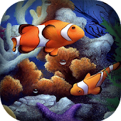 Clownfish Aquarium HD LWP