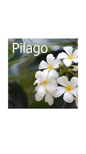 Pilago- screenshot thumbnail