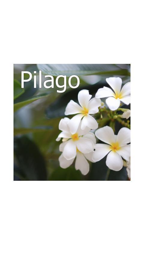 Pilago- screenshot