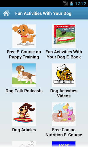 Fun Activities With Your Dog