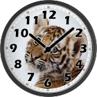 Sweet Tiger Clock icon