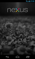 Screenshot of Nexus Logo
