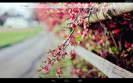 玩免費個人化APP|下載Flowers on the tree Wallpaper app不用錢|硬是要APP