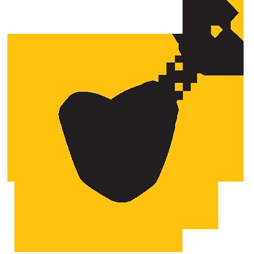 VIP Access Icon