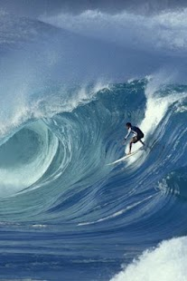 Go Surfing - screenshot thumbnail