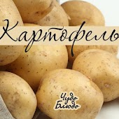 Картофель - кулинария, рецепты