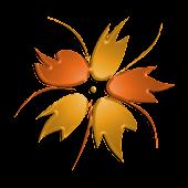 Flora Vascular mobile