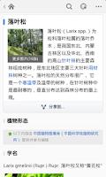 Screenshot of 百度百科