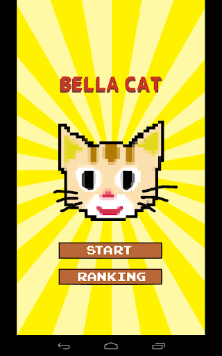 Bella Cat