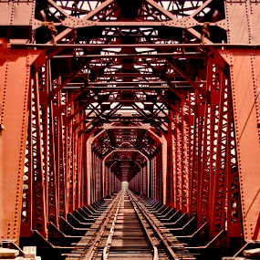 Queen Empress Bridge  by Agha Ahmed - Transportation Railway Tracks ( pakistan, railroad tracks, railway, railroad, architectural detail, architecture, bridge, steel )
