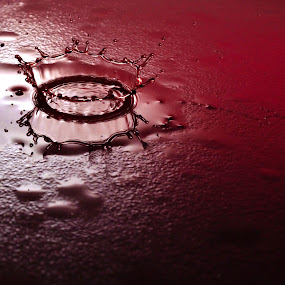 Blood is thicker than water by Simon Gilgallon - Abstract Water Drops & Splashes ( red, reds, raining, red wine, droplet, crown, raindrops, raindrop, blood, rain, rain drop )