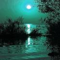 Moonlight icon