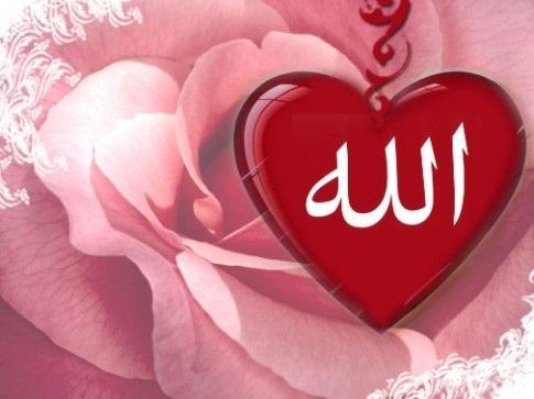 Mendalami Islam