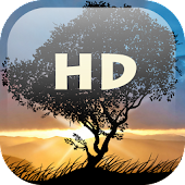 Falling Leaves HD