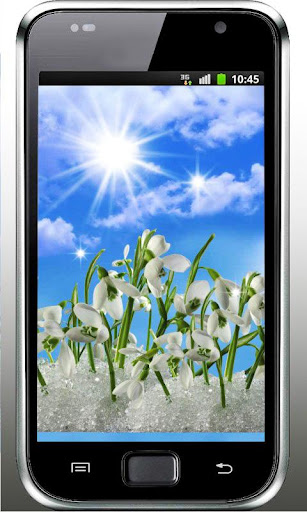 Snowdrop n Sun live wallpaper