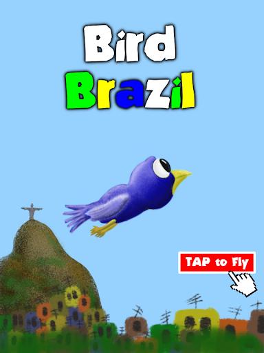Little Bird Brazil