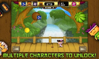 Screenshot of 8bit Ninja