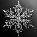 Real Snow  (Live Wallpaper) icon