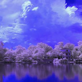 PAW Park by Whayne Peñero - Landscapes Waterscapes