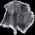 Brukset logo