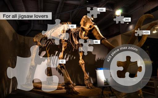 玩解謎App|Dallas Jigsaw Puzzles免費|APP試玩