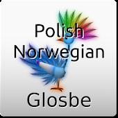 Polish-Norwegian Dictionary