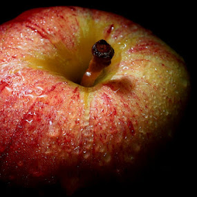 Red Apple by Barry Allan - Food & Drink Fruits & Vegetables