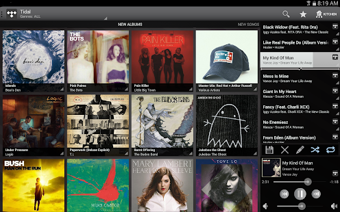 Bluesound - screenshot thumbnail