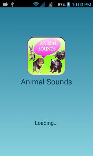 Animal Sounds Game 2015
