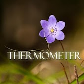 Thermometer Lite (no internet)