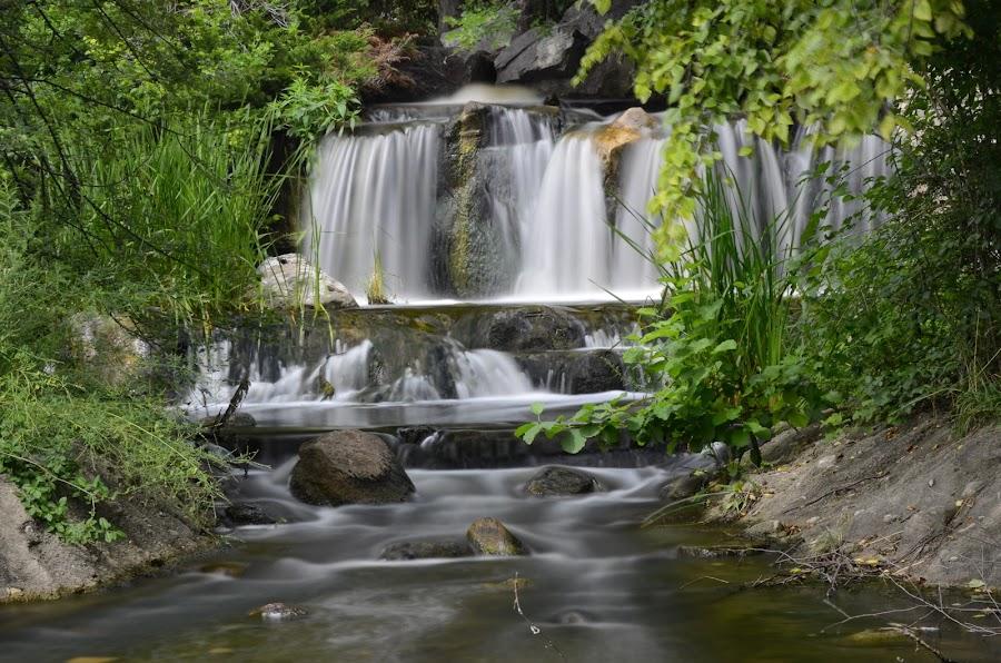 Waterfalling by Norine DeSilva - Uncategorized All Uncategorized