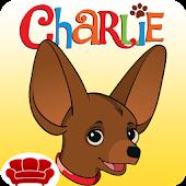 Charlie Chocolate Chihuahua