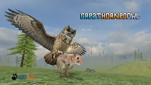 Horned Owl Simulator