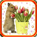 Bunny n Flowers live wallpaper icon