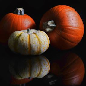 Pumpkins and reflections by Cristobal Garciaferro Rubio - Artistic Objects Still Life
