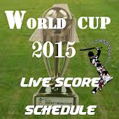 cricket worldcup-2015 scores